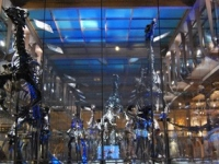 R'Switch Glass Musée sans projection by R'Screen